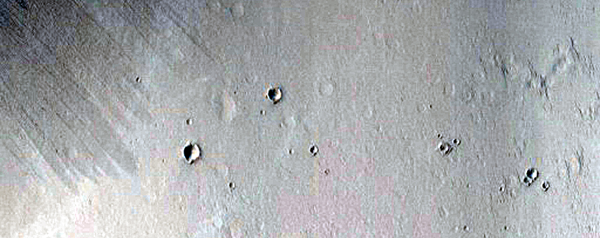 Candidate New Impact in Tuscaloosa Crater Wall