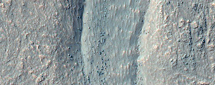 South Facing Crater Gullies West of Argyre Region
