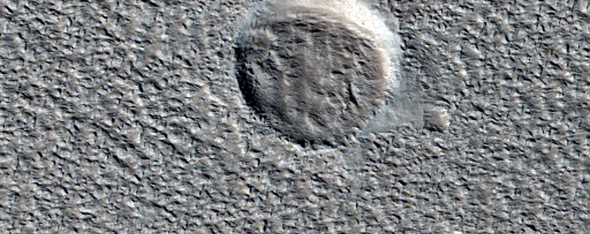 Small Craters