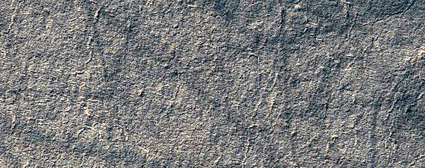 Searching for Dust Devil Tracks