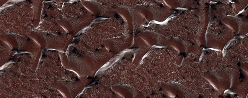 Dunes Shaped Like Ts and vs