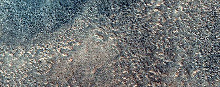 Mounds in Acidalia Planitia