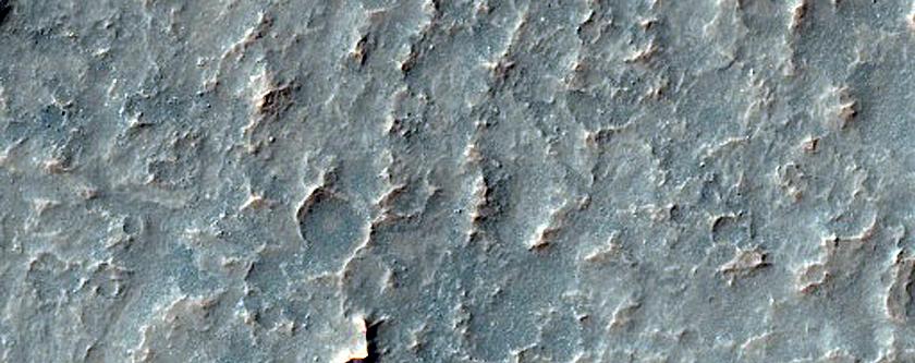 Monitoring Dust Devil Tracks