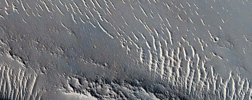 Streamlined Features in Granicus Valles