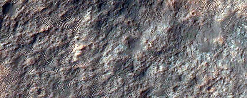 Diverse Minerals in Southern Cross Crater