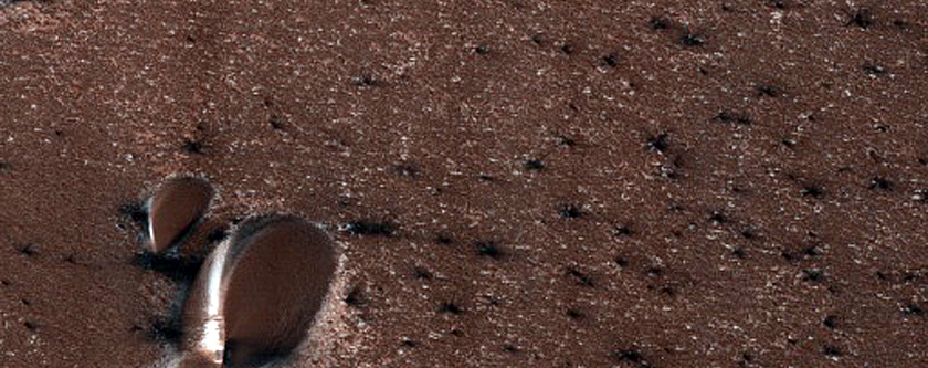 Dunes Dubbed Carlsbad