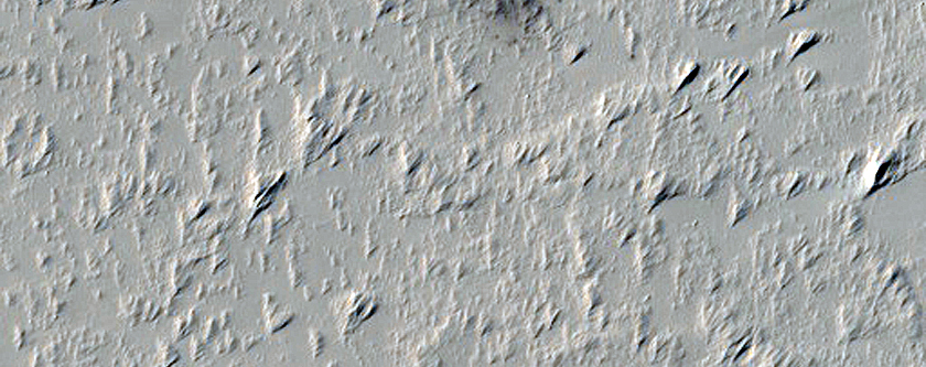 Candidate New Impact on Arsia Mons