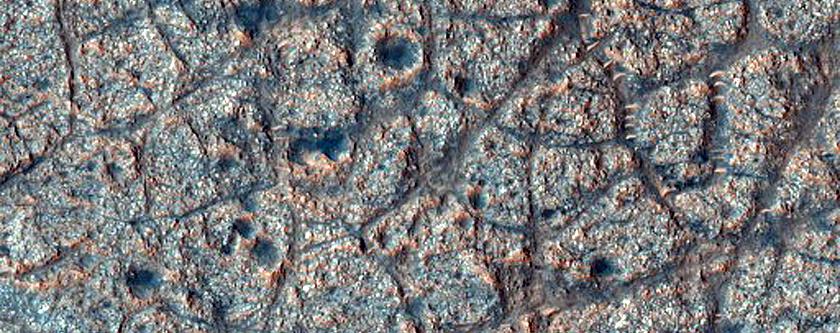 Polygonal Cracks in Galilaei Crater
