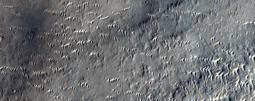 Crater and Rocky Ejecta