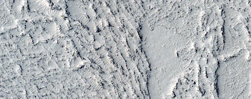 Flow Contact in Elysium Planitia