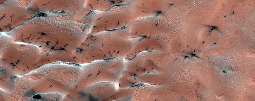 Olympia Undae Dune-Ice Survey