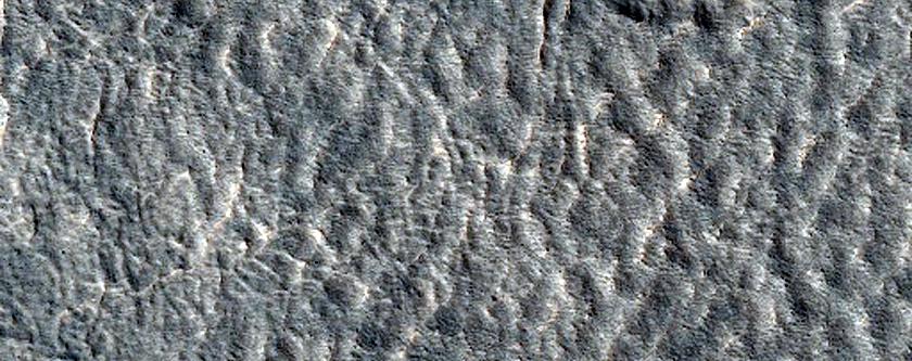 Northern Plains Terrain