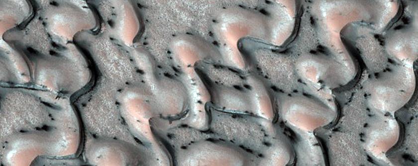 Dunes Dubbed Laguna