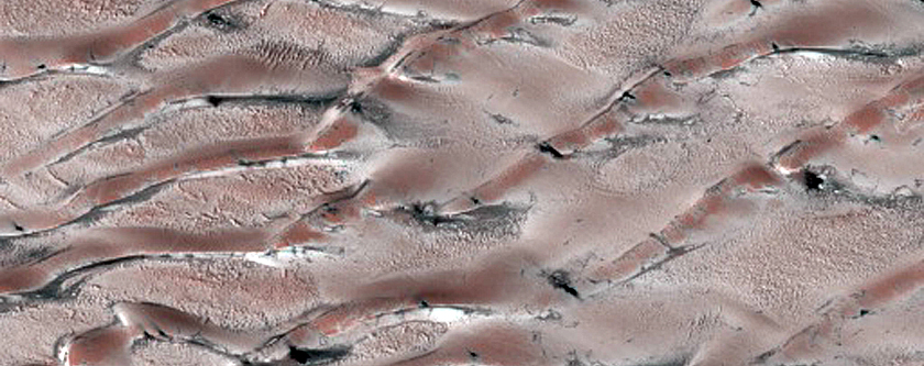 Dune-Ice Mobility in Olympia Undae