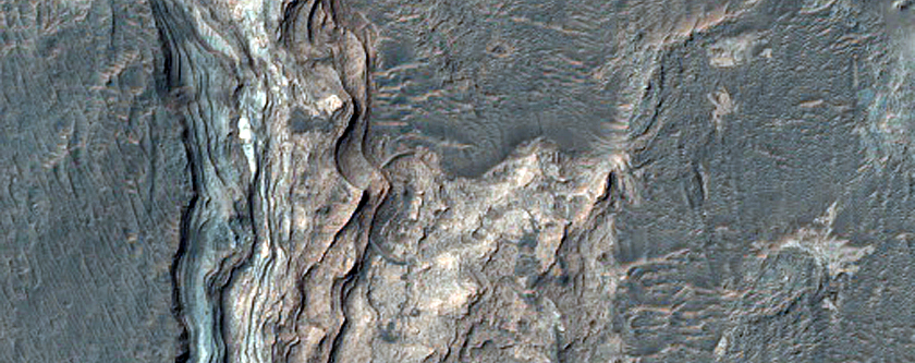 Light-Toned Layered Deposits in Ladon Valles Basin