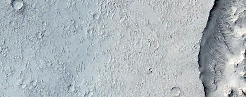 Terrain in Elysium Planitia