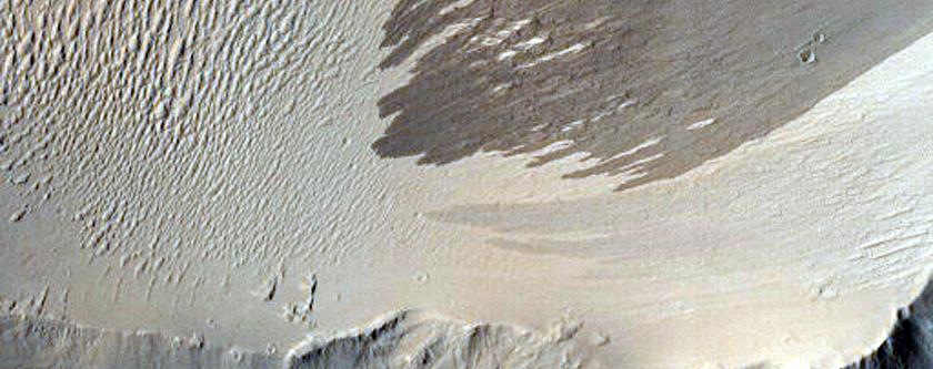 Terrain in Tharsis Region