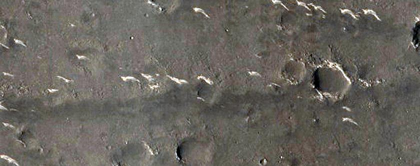 Mounds in Utopia Planitia