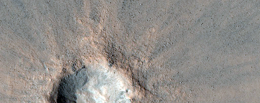 Recent Crater on Northern Plains