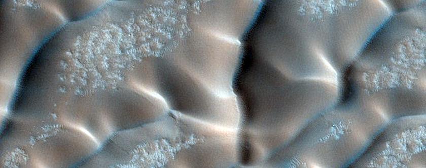 Dunes Dubbed Redondo