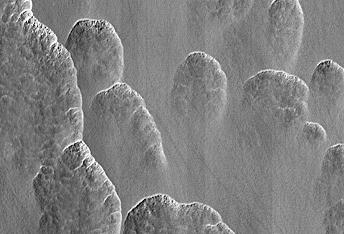 A Recipe for Martian Scallops