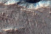 Gullies in Crater in Terra Cimmeria