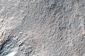 Gullies Above Fresh-Looking Small Impact Crater