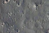 Ridges in Western Elysium Planitia
