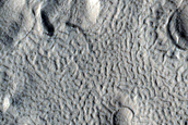 Flow in Northern Arabia Terra