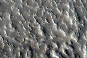 Rings in Crater Ejecta in Northern Mid-Latitudes