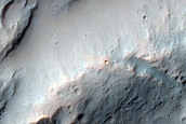 Front Lobe of a Delta Feature
