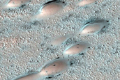 North Polar Duneforms and Frost