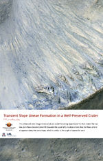 Transient Slope Lineae Formation in a Well-Preserved Crater