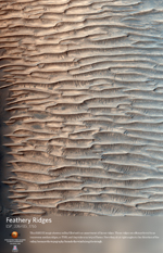 Feathery Ridges