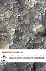 Clays in the Eridania Basin