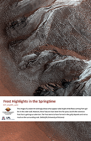 Frost Highlights in the Springtime
