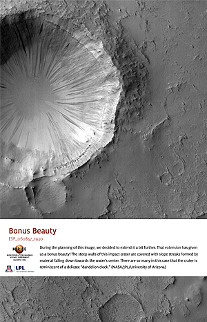 Bonus Beauty