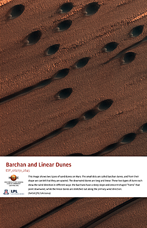 Barchan and Linear Dunes