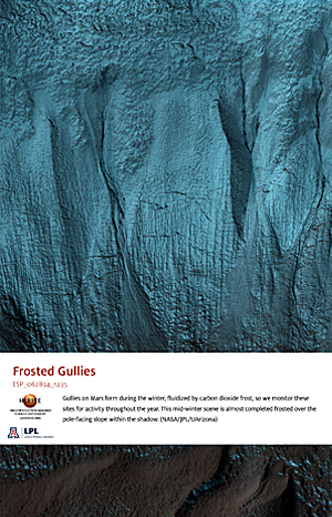 Frosted Gullies