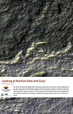 Looking at Martian Salts and Clays